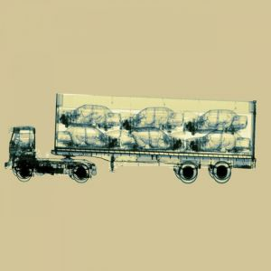 X-ray-car-lorry