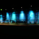x-ray-art-science-museum6
